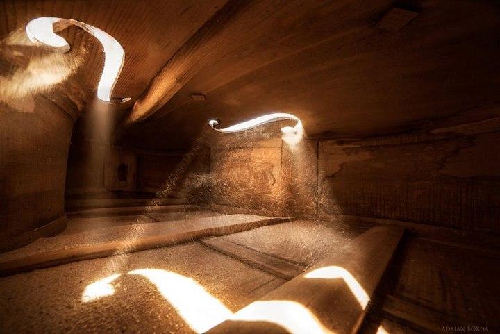 Удивительные фотографии снятые внутри музыкальных инструментов (3)
