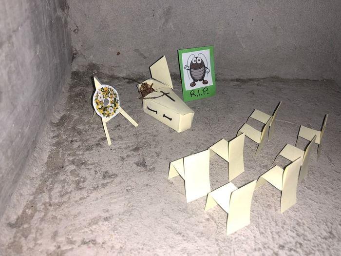 История дохлого таракана (7)
