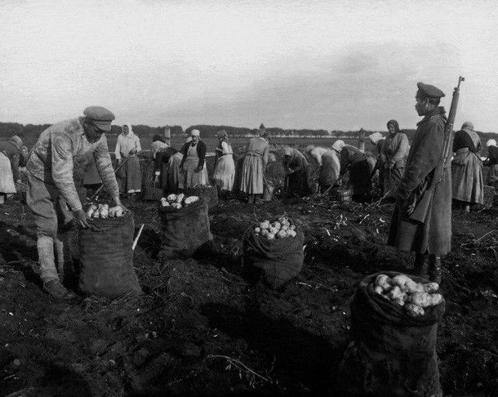 Российская Империя конца 19 века (9)