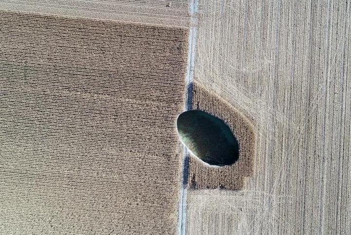 В Турции на кукурузном поле образовался провал (8)