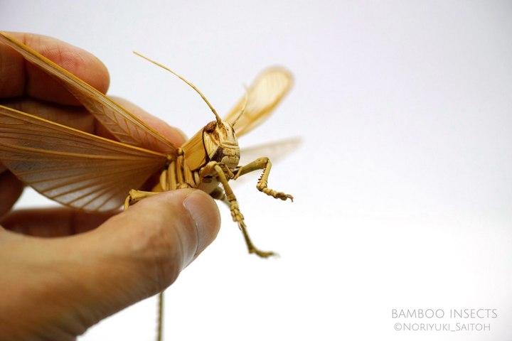Деревянные скульптуры насекомых от Noriyuki Saitoh (2)