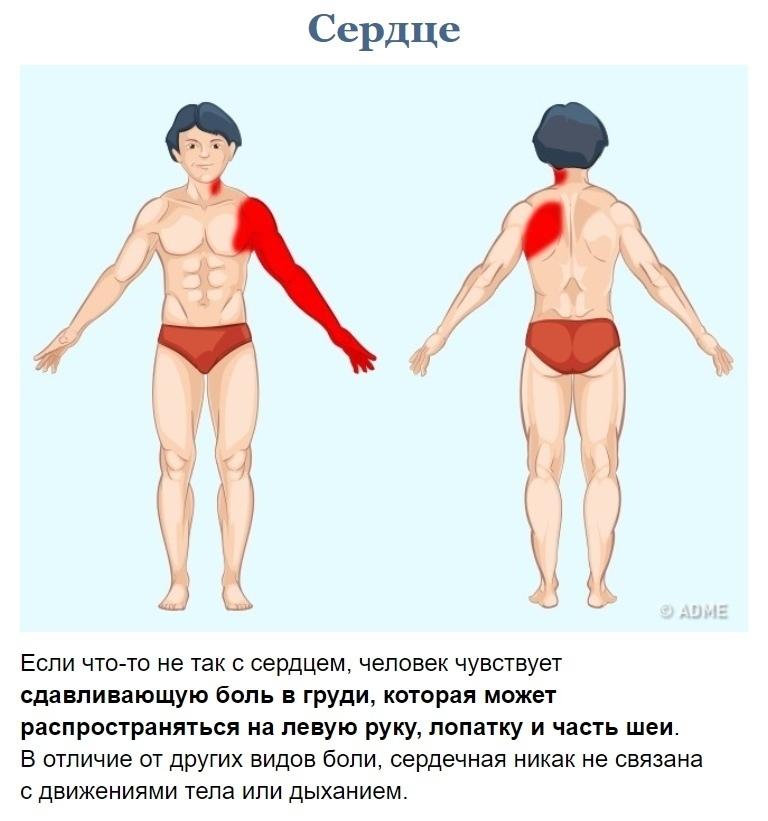 Как узнать что у вас болит? (9)