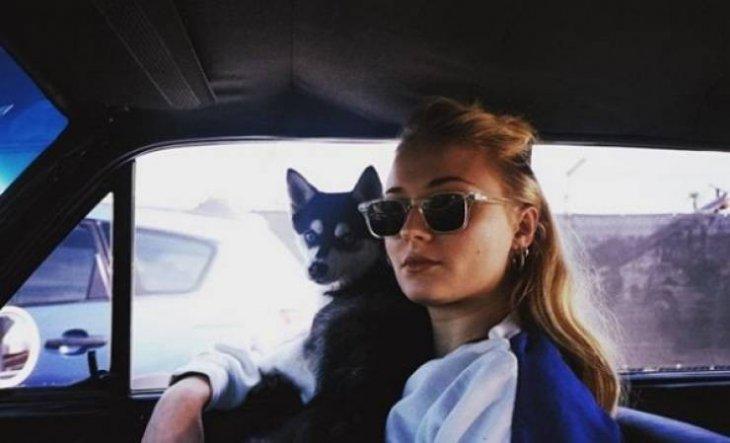 """Интересные факты о Софи Тернер - леди Санса из """"Игры престолов"""" (10)"""
