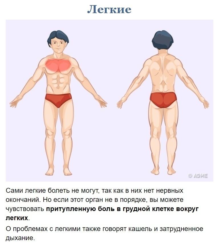 Как узнать что у вас болит? (8)