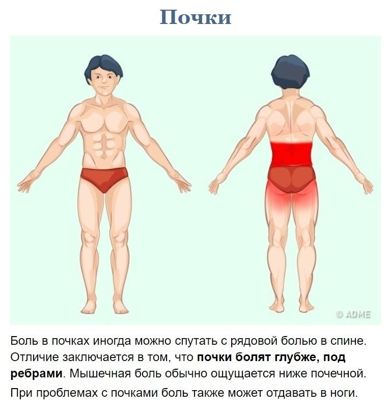 Как узнать что у вас болит? (7)