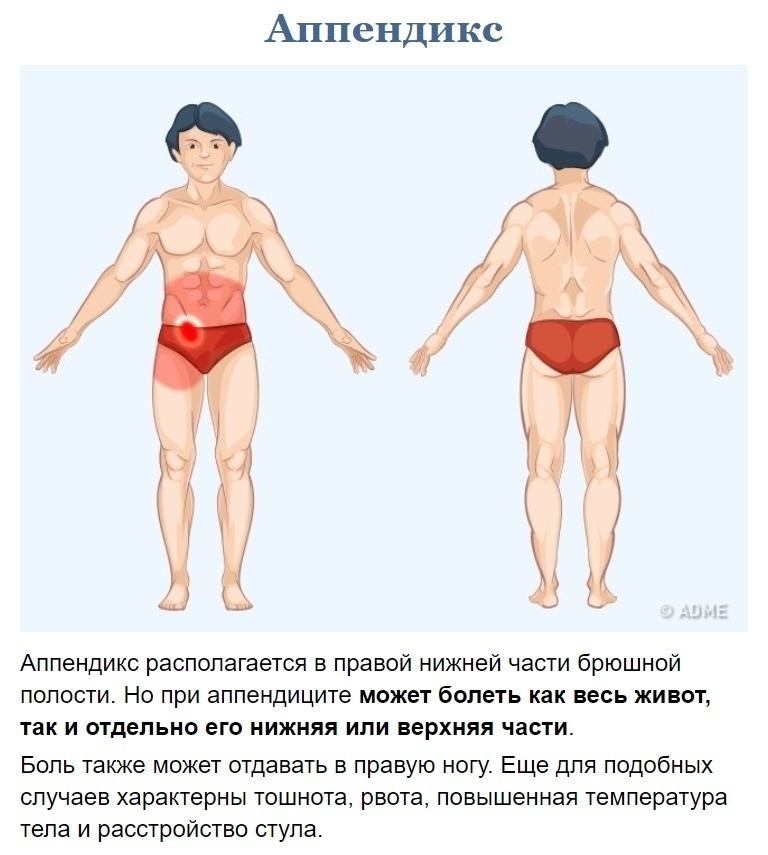 Как узнать что у вас болит? (6)
