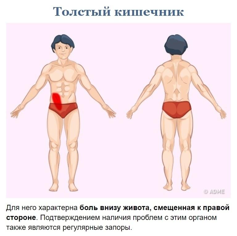 Как узнать что у вас болит? (5)