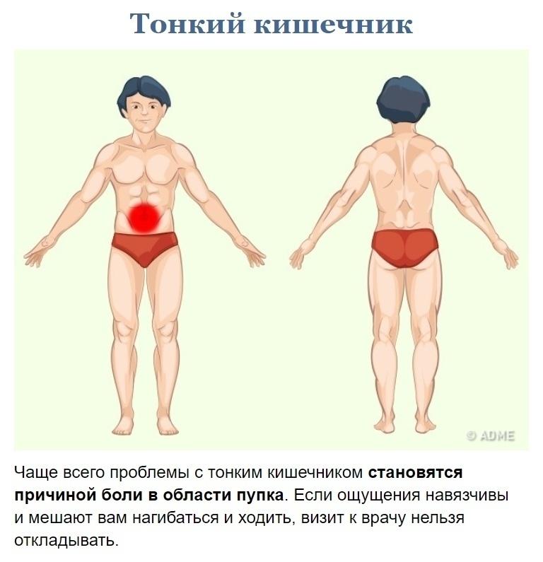 Как узнать что у вас болит? (2)