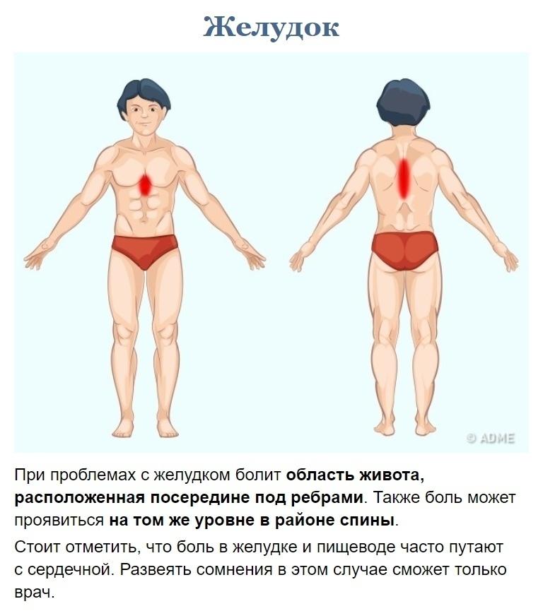 Как узнать что у вас болит? (1)