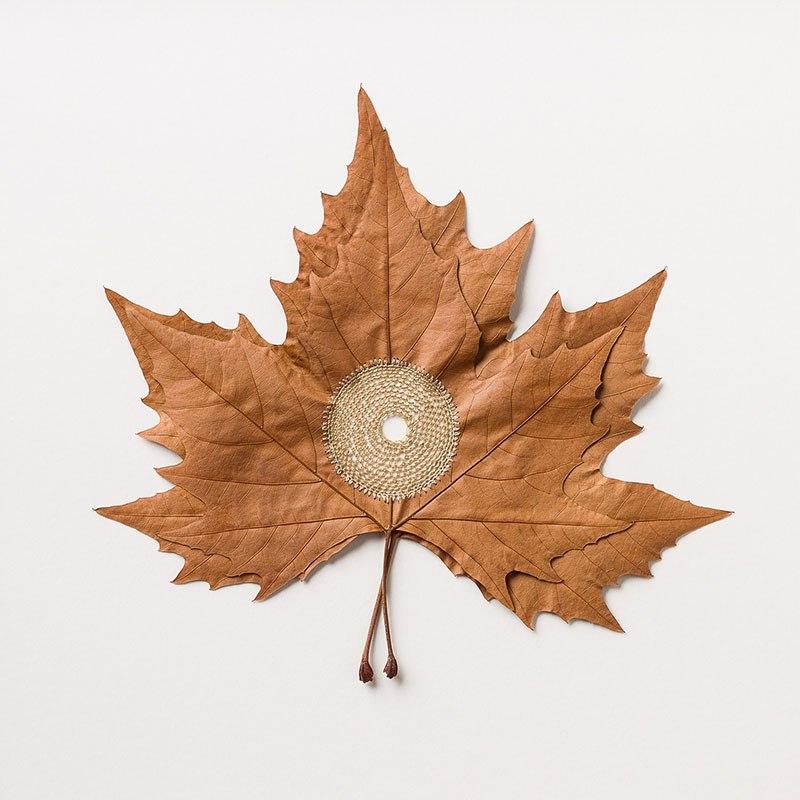 Искусство вязания крючком или новая жизнь опавших листьев (2)