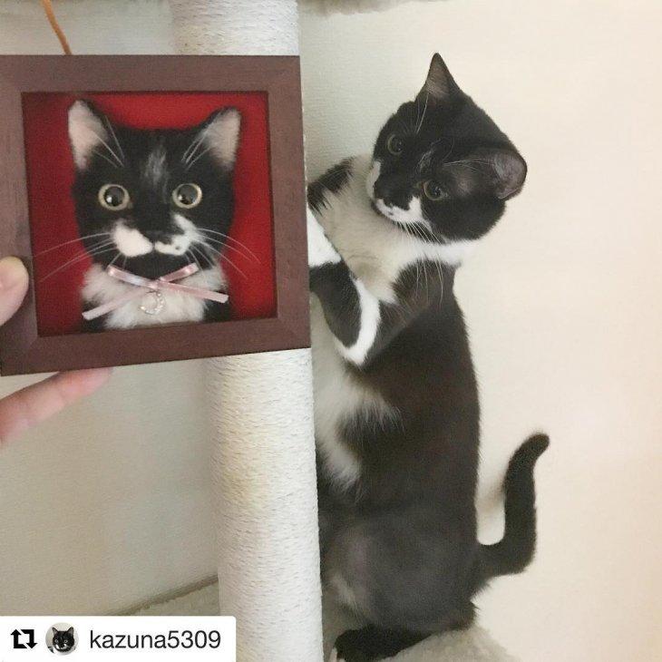 3D-портреты кошек (2)