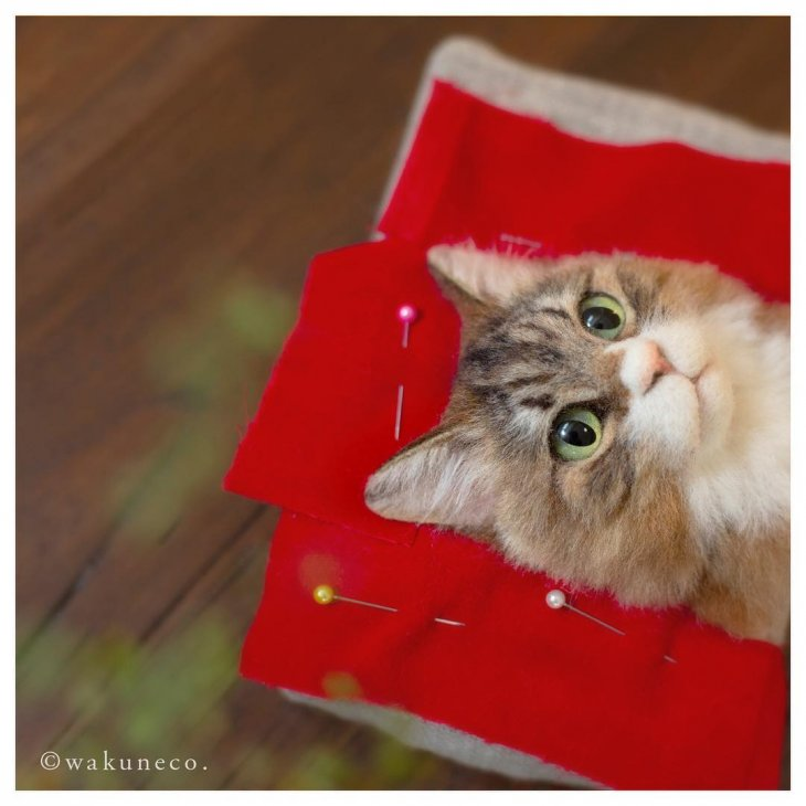 3D-портреты кошек (9)