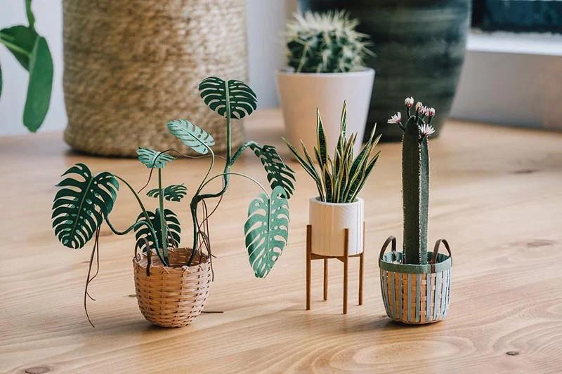 В это трудно поверить, но эти растения выполнены из бумаги (2)