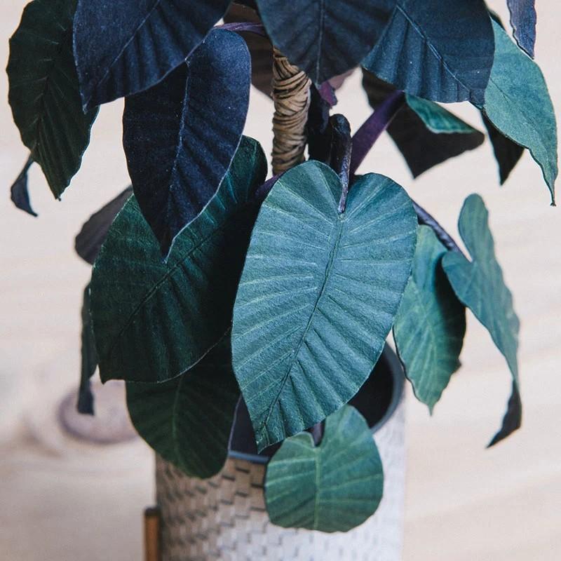 В это трудно поверить, но эти растения выполнены из бумаги (8)