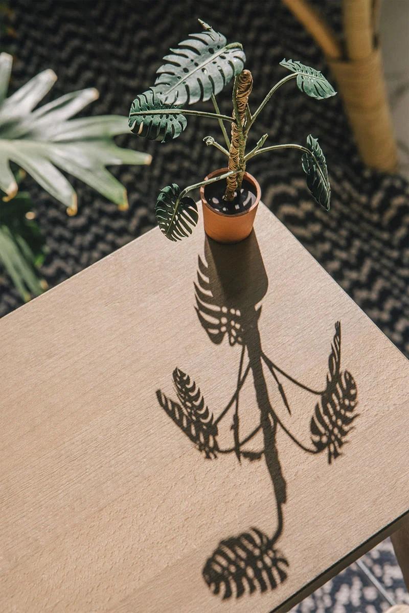 В это трудно поверить, но эти растения выполнены из бумаги (9)